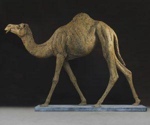 Camel Life-size 300513_0209