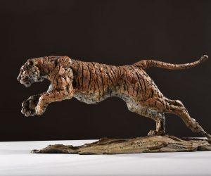 Tiger 2020 DSC_2897